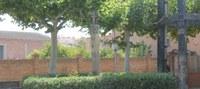 L'Ajuntament de Bell-lloc d'Urgell prova l'ús de l'àcid acètic, un producte natural no tòxic, utilitzat en agricultura ecològica