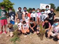 L'Ajuntament i l'Escola Ramon Farrerons commemoren el Dia del Medi Ambient
